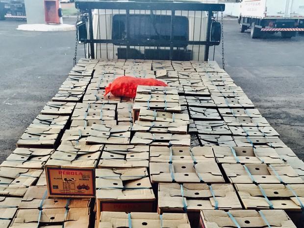 Mercadoria foi roubada em Campina Verde e está avaliada em R$ 50 mil (Foto: Divulgação / Polícia Civil)
