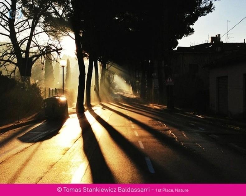Essa foto foi uma das vencedoras do iPhone Photography Awards de 2012 (Foto: Reprodução)