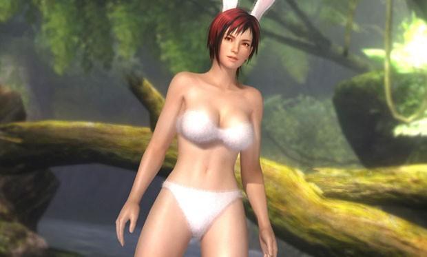 Muitos dos jogadores preferem as roupas e os atributos físicos das lutadoras do que do game em si (Foto: Divulgação)