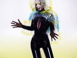 Capa do álbum 'Vulnicura', de Björk