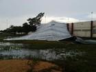 Tempestade de 89 km/h derruba árvores e destelha prédios em RR