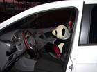 Quadrilha usa laranjas e panda para enganar quem compra carro na web
