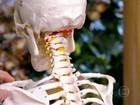 Exercícios de impacto ajudam a manter ossos e músculos saudáveis