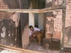 Cão salva rapaz em incêndio que destruiu casa em Matão: 'Um herói'
