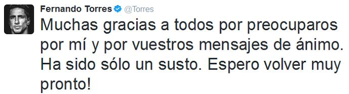 Fernando Torres Twitter traumatismo craniano (Foto: Reprodução)