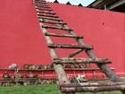 Após túnel, escadas feitas com tronco de árvores são achadas em cadeia