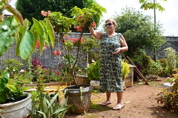 As flores de Angelina recebem tratamento extra no período em que a aposentada viaja (Foto: Flávio Godoi/G1)