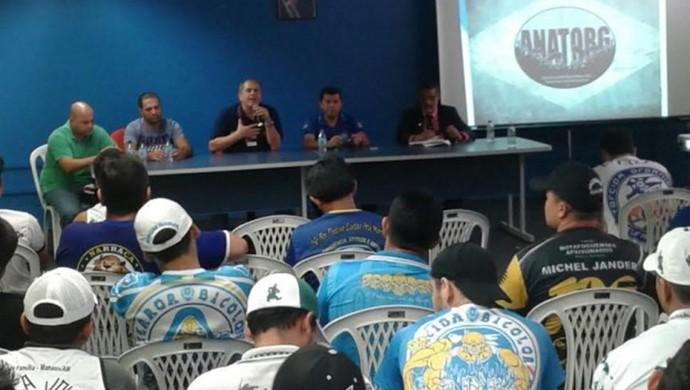Associação Nacional de Torcidas Organizadas  (Foto:  Josemar Antunes)