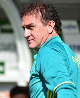 Palmeiras x Atlético-MG Cuca (Foto: Marcos Ribolli)