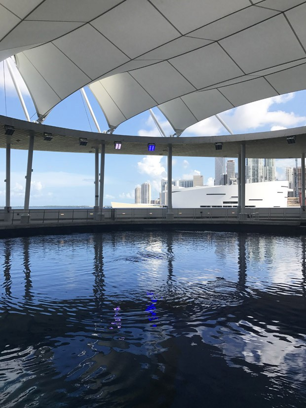 Frost Museum of Science: um tour pelo novo museu de Miami (Foto: Amanda Sequin)