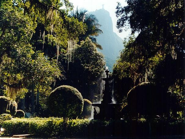 Jardim Botânico comemora 205 anos de sua fundação e hoje é referência em pesquisa (Foto: Marcos Sá Corrêa / Divulgação)