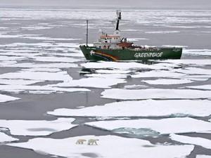 Estudos recentes afirmam que espécies que vivem no Ártico, como o urso polar, focas e crustáceos, precisam se adaptar ao constante degelo ou podem desaparecer para sempre devido ao aumento da temperatura do planeta. (Foto: Danile Beltra/Greenpeace/AFP)