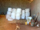 Criança morre após ser atingida por saco de milho de 600 kg em Altônia
