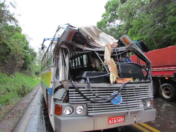 Segundo a polícia, ônibus estava em movimento quando a árvore caiu (Foto: Michelli Arenza/RPC TV)