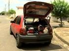 Polícia prende homem e apreende menores suspeitos de onda de furtos