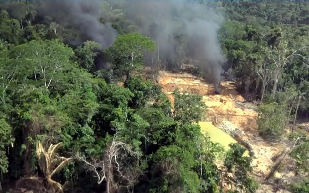 Extração de madeira e incêndios são principais fatores para queda da extensão da área intacta de florestas (Foto: Reprodução/TVCA)