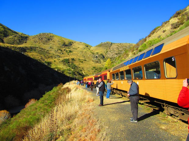 Trem faz pelo menos uma parada e reduz a velocidade algumas vezes para os turistas fazerem fotos (Foto: Juliana Cardilli/G1)
