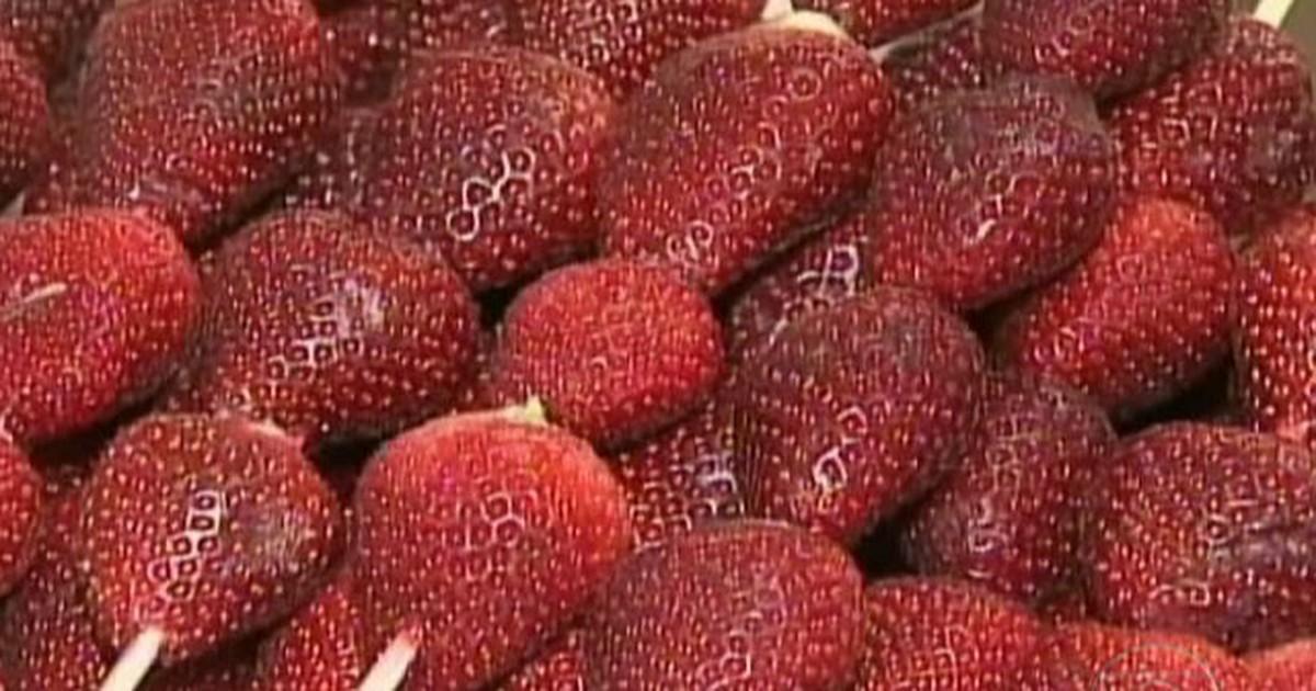 3ce3c94f2 Agronegócios - Excesso de procura de morango causa falta da fruta em festa  no PR