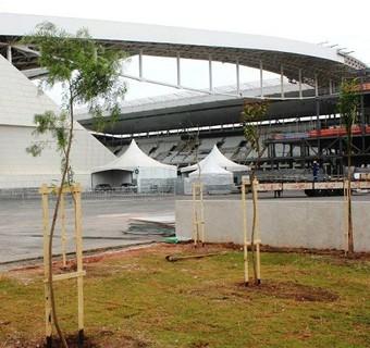 Árvores Arena Corinthians (Foto: Divulgação/Corinthians)
