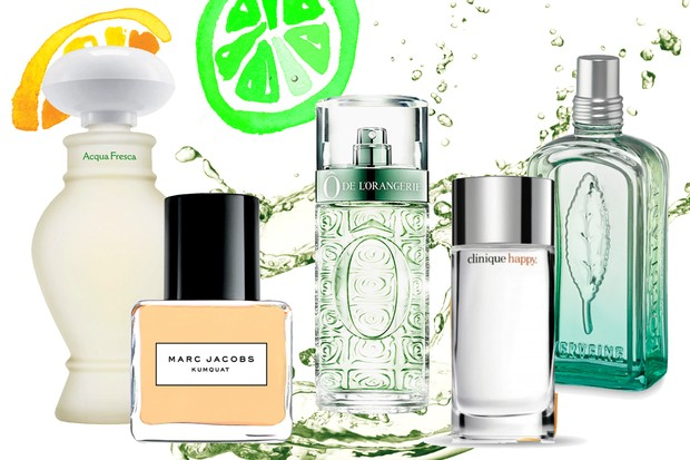 Perfumes Ctricos Foto Reproduo