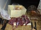 PM de Meio Ambiente apreende carnes de caititu em Riachinho