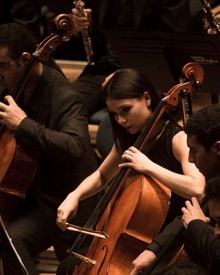 Orquestra Jovem do Estado (Foto: Heloisa Bortz/Divulgação)