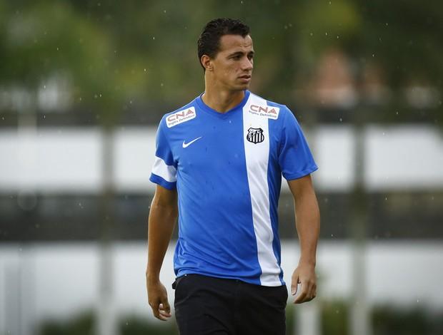 Leandro Damião Santos