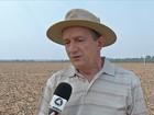 Reflexos causados pelo tempo seco preocupam produtores de soja