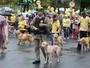 11ª Cãominhada reúne famílias e animais em uma grande celebração