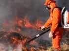 Queimadas e incêndios passam de  200 no Centro-Oeste de MG em julho