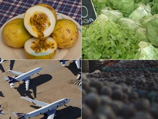 Preços em queda (Foto: Lucy Nicholson/Reuters, Igor Mota/Jornal Amazônia, Reprodução/TV Tem, Reprodução/TV Bahia)