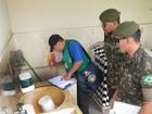 WhatsApp começa a ser usado em ação de combate ao Aedes no MA