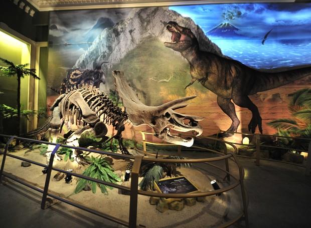 Jurassic Land (Foto: Reprodução/ cocukrehberi)