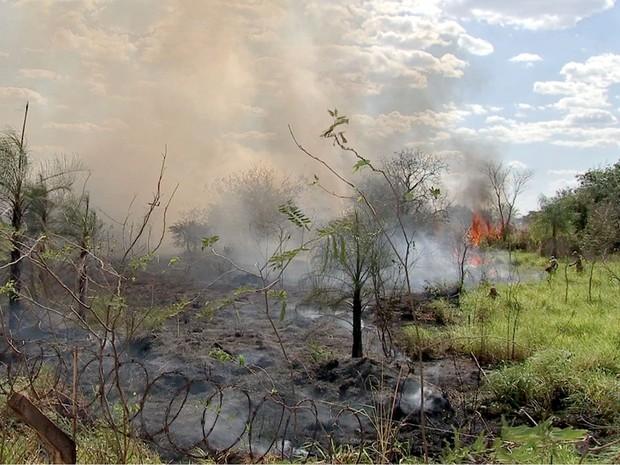 Queimadas em Mato Grosso, MT, Cuiabá, incêndio, fogo (Foto: Reprodução/TVCA)