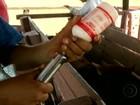 Começa vacinação contra aftosa em fronteiras com Paraguai e Bolívia