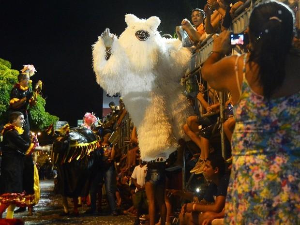 O Urso Amigo Batucada é bicampeão do Carnaval Tradição de João Pessoa (Foto: Dayse Euzébio/Secom-JP)
