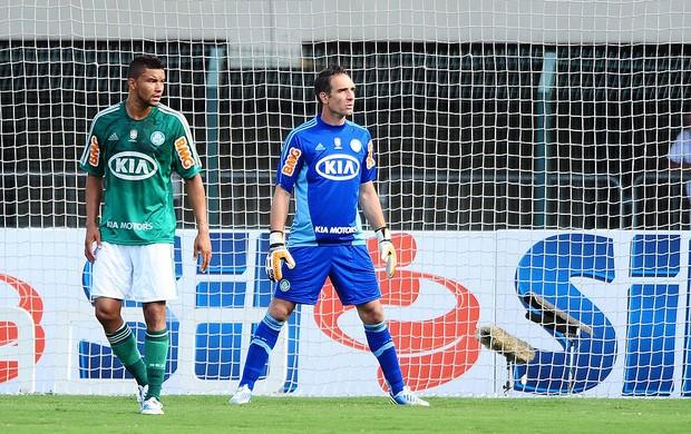 Fernando Prass na partida do Palmeiras (Foto: Marcos Ribolli / Globoesporte.com)