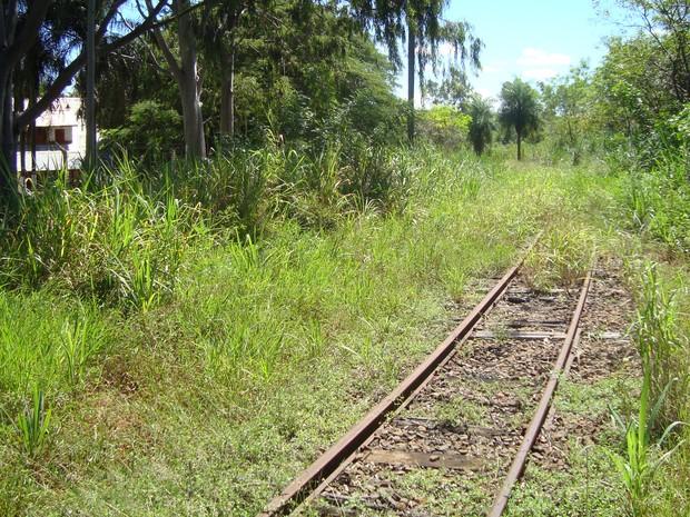 Ferrovia na região de Presidente Prudente está desativada (Foto: Arquivo MPF/Cedida)