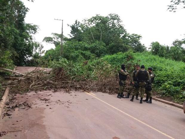 Moradores deixaram árvore atravessada no meio da estrada. marituba aterro (Foto: Alvaro Ribeiro/ TV Liberal)