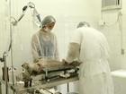 Prefeitura de Lagoa da Prata oferece castração para controle de animais