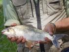 Campeonato de pesca em Mallet recebe inscrições, no sul do PR