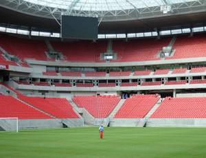 zé teodoro arena pernambuco náutico (Foto: Aldo Carneiro / Pernambuco Press)
