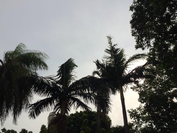 Tempo chuvoso nesta quarta-feira (25) em Campo Grande (Foto: Isabela Cavalcante/G1 MS)