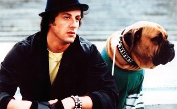 Sylvester Stallone e seu cachorro em cena de 'Rocky' (Foto: Reprodução)