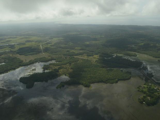 Apenas 3,7% das terras do Amapá estão registradas em nome do estado (Foto: Abinoan Santiago/G1)