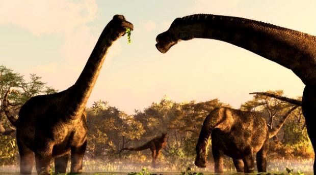 Dinos do Brasil: simulação no museu (Foto: Divulgação/Dinos do Brasil)