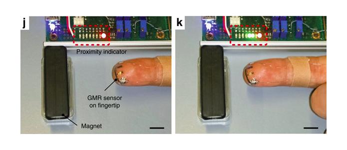Imagens mostram equipamento com ímã identificando aproximação da cobaia (Foto: Reprodução/Nature)