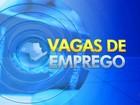 PATs abrem 106 vagas de emprego na região de Itapetininga