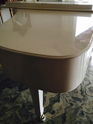 Piano de Eike Batista está na casa de um dos vizinhos do juiz Flávio Roberto de Souza (Foto: Reprodução/Instagram de Flavia Sampaio)
