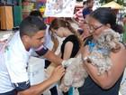 Campanha de vacinação antirrábica em Cacoal será neste sábado, 19